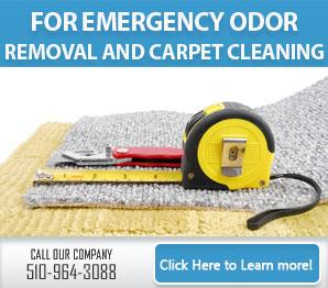 Carpet Cleaning Berkeley, CA | 510-964-3088 | Best Service